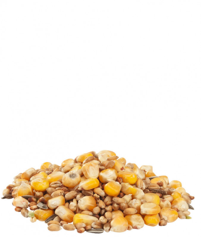Versele Laga Country's Best GRA-MIX Hens mixture (with whole maize and sunflower seeds) 20 kg