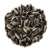 Striped Sunflower Seeds 20 kg