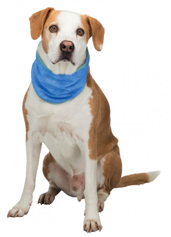 Trixie Cooling Bandana  S Blue order cheap