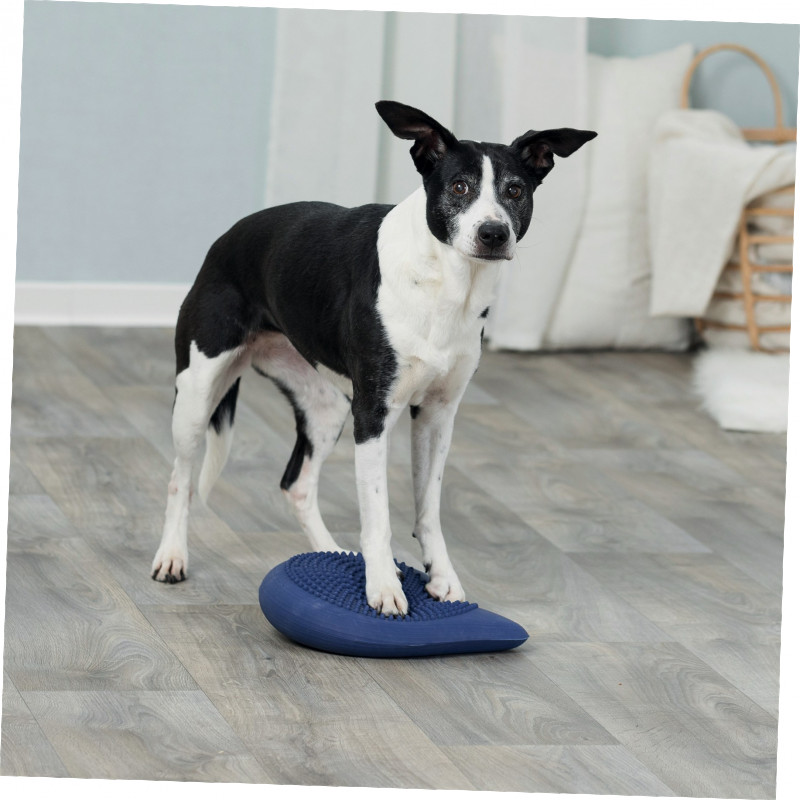 Trixie Dog Activity Balance Cushion 28x4x28  cm  buy online
