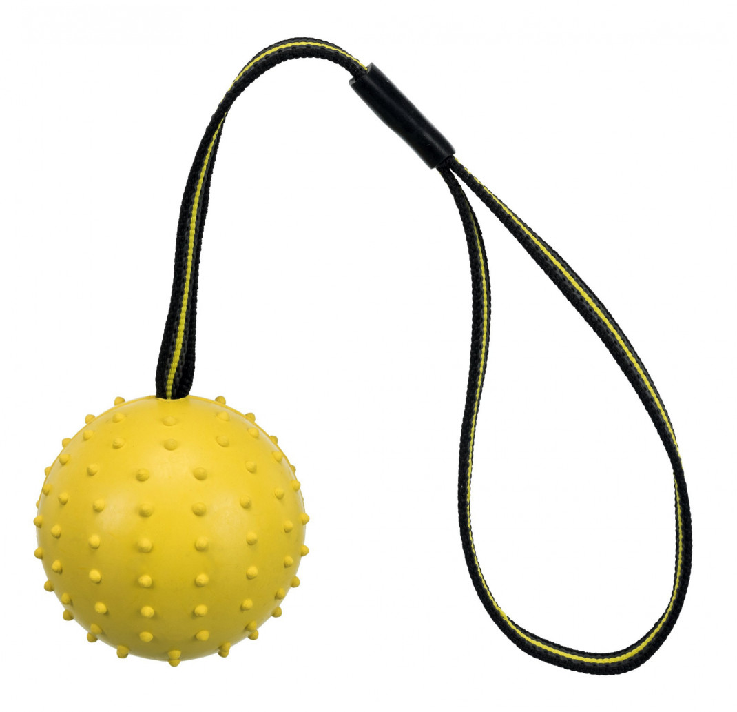 Trixie Sporting Ball on a Strap, Natural Rubber and Polyester EAN: 4011905328201 reviews