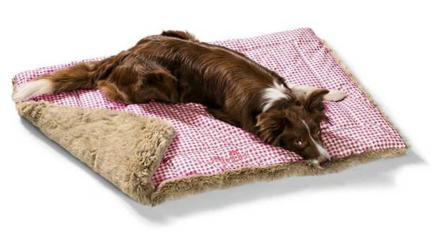Hunter Dog Blanket Astana