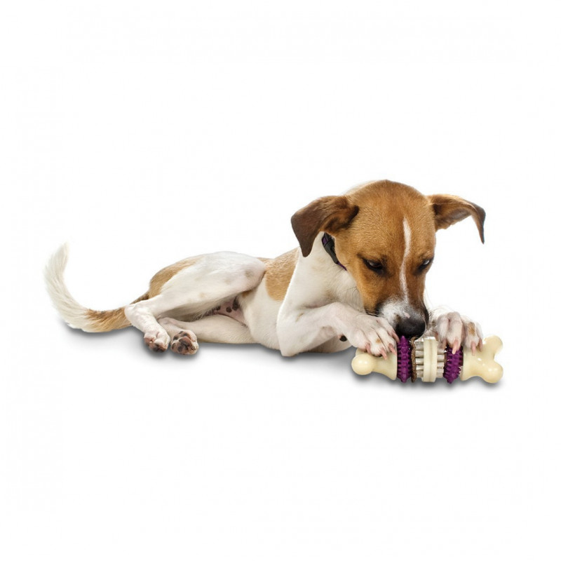 PetSafe Busy Buddy Bristle Bone  XS