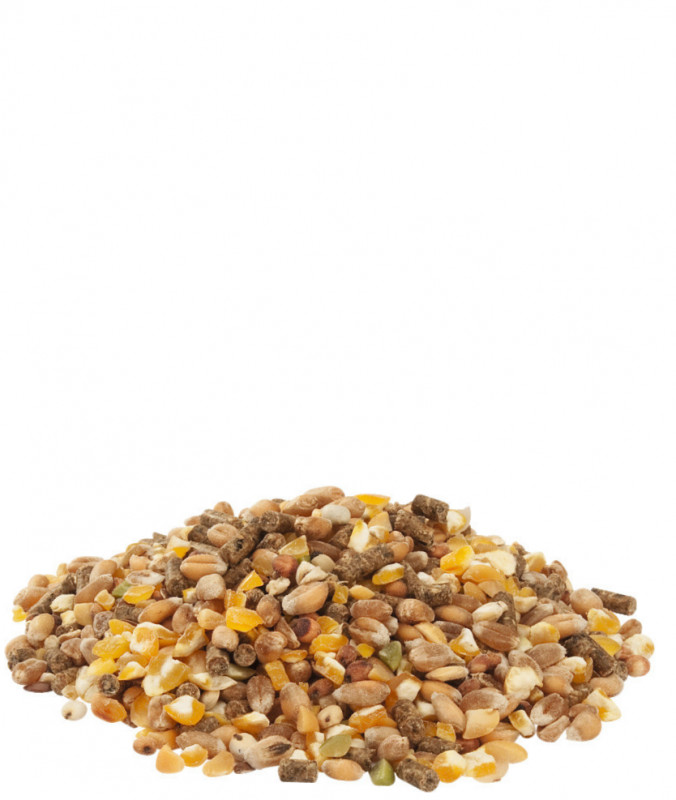 Versele Laga Country's Best Gold 4 MIX 5 kg, 20 kg