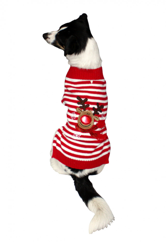 Good Boy Reindeer Jumper L Rot von Armitage Pet Care online günstig kaufen